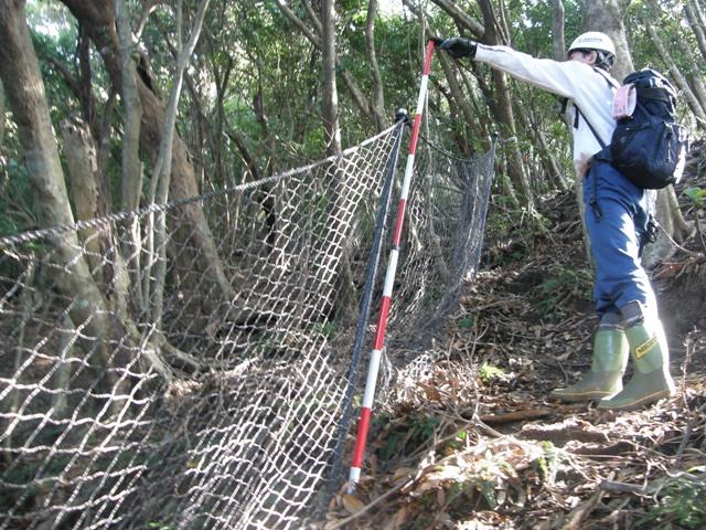 植生保護柵
