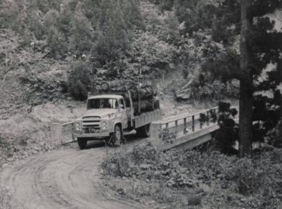 トラック運材