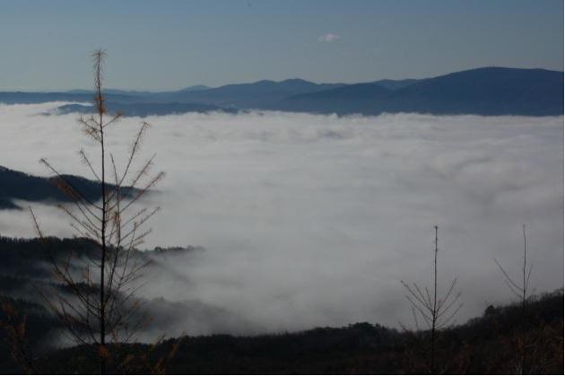 遠野市街地の雲海