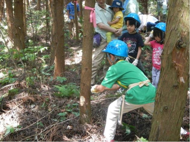森林教室での体験学習