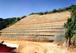 治山工事による崩壊斜面の復旧1