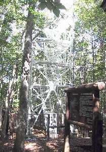 森林総合研究所が設置した二酸化炭素観測タワー