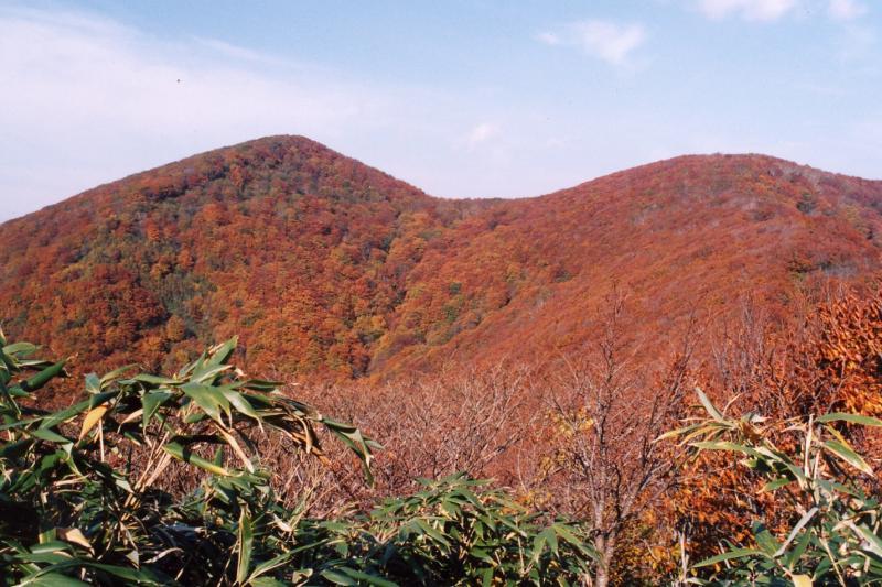 大倉岳の紅葉