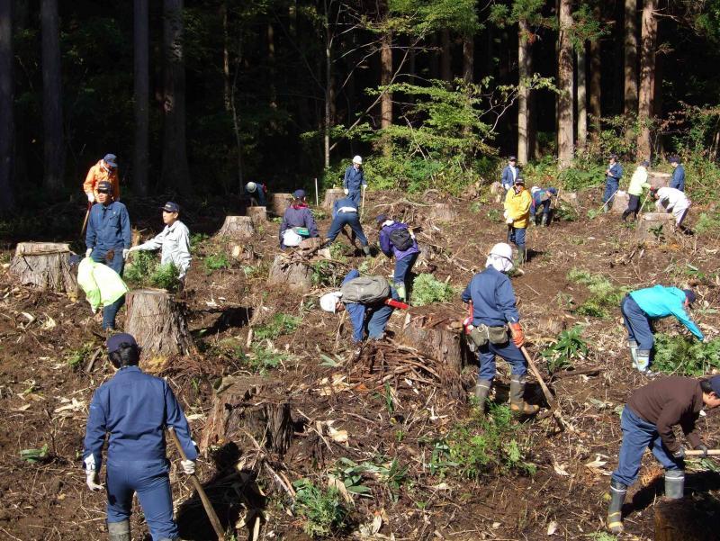 太田山国有林植樹会