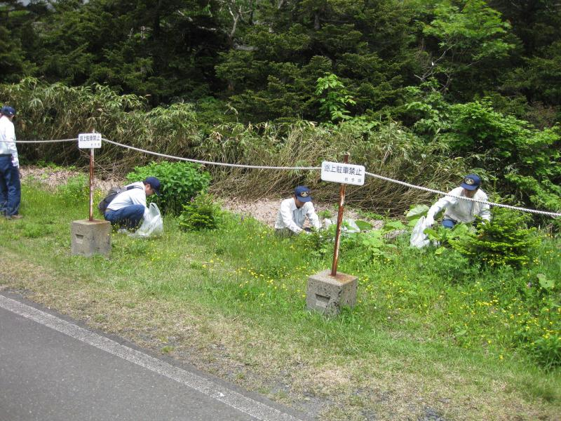 移入植物の駆除状況1