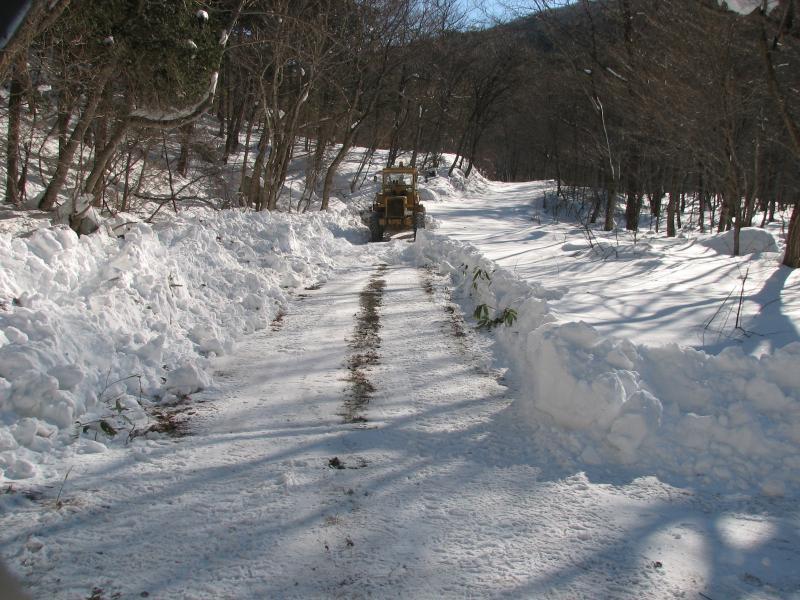 シカ捕獲支援の除雪