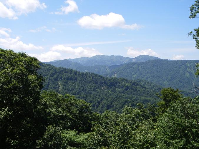 白神山地の画像 p1_37